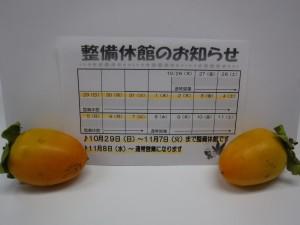DSCF5408[1]